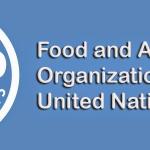 16 Οκτωβρίου, Παγκόσμια Ημέρα Διατροφής και Επισιτισμού, μία ημέρα σοβαρού Προβληματισμού