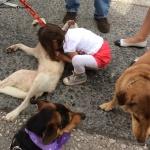 Κατοικίδια ζώα, κάτι πολύ σημαντικό για την ανάπτυξη του παιδιού!