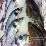 Η διατροφική αξία του ψαριού