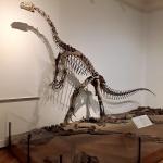 Οι δεινόσαυροι στην Ελλάδα