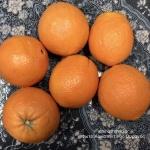 Ύφασμα από πορτοκάλι! (orange fiber)