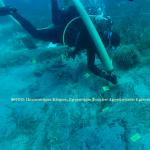 Υποβρύχια αρχαιολογία – Τα ναυάγια